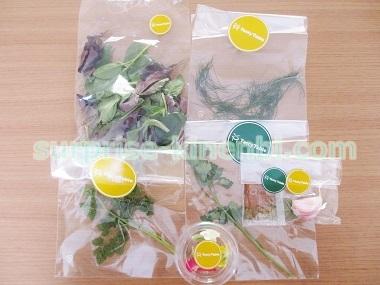 TastyTable新鮮なサラダ用野菜